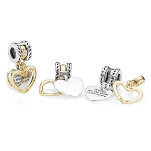 Pandora Seeds of the Future Split Heart Charm